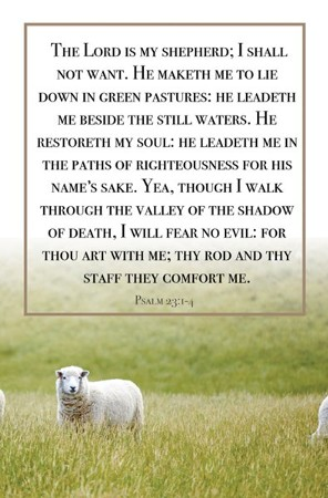 The Lord Is My Shepherd Psalm 23 1 4 Kjv Bulletins 100 Christianbook Com