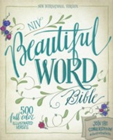 NIV Beautiful Word Bible--soft leather-look, chocolate/turquoise - Slightly Imperfect