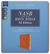 NASB 1995 XL Bible, Comfort Print--soft leather-look, brown