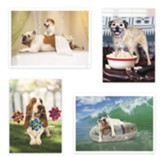 In Dog Years Birthday Cards, Box of 12, (NIV)