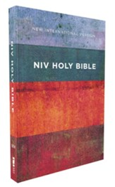 NIV Value Outreach Bible--softcover, red/blue stripes