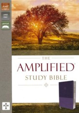 Amplified Study Bible--soft leather-look, purple - Slightly Imperfect