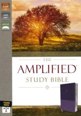 Amplified Study Bible--soft leather-look, purple (indexed) - Slightly Imperfect