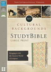 NIV, Cultural Backgrounds Study Bible, Large Print, Imitation Leather, Green