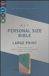 NIV Personal-Size Large-Print Bible--soft leather-look, teal/gold