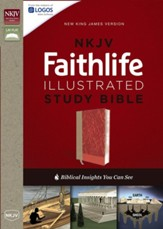 NKJV Faithlife Illustrated Study Bible--soft leather-look, pink