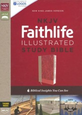 NKJV Faithlife Illustrated Study Bible--soft leather-look, pink (indexed)