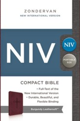 NIV Compact Bible; Burgundy; Custom  - Slightly Imperfect