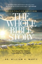 The Whole Bible Story, illustrated  edition: Everything that Happens in the Bible in Plain English - Slightly Imperfect
