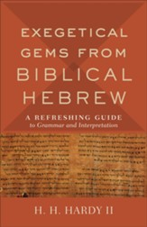 Exegetical Gems from Biblical Hebrew: A Refreshing Guide to Grammar and Interpretation - eBook