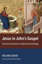 Jesus in John's Gospel: Structure and Issues in Johannine Christology - eBook