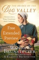 The Brides of the Big Valley (FREE PREVIEW): 3 Romances from a Unique Pennsylvania Amish Community - eBook