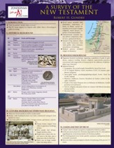 A Survey of the New Testament Laminated Sheet - eBook