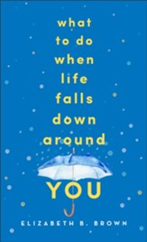 What to Do When Life Falls Down Around You - eBook