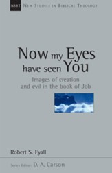 Now My Eyes Have Seen You: Images of Creation and Evil in the Book of Job - eBook