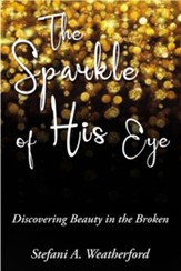 The Sparkle of His Eye the: Discovering Beauty in the Broken - eBook