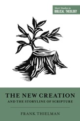 The New Creation and the Storyline of Scripture - eBook