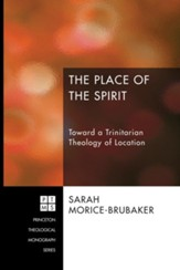 The Place of the Spirit: Toward a Trinitarian Theology of Location - eBook