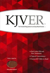 KJVer (Easy Reader) Large Print Thinline Bible, Ultrasoft Dark Brown/Light Brown