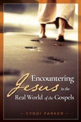 Encountering Jesus in the Real World of the Gospels - eBook