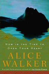Now Is the Time to Open Your Heart:  A Novel - eBook