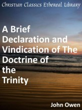 Brief Declaration and Vindication of The Doctrine of the Trinity - eBook
