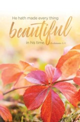 Every Thing Beautiful (Ecclesiastes 3:11, KJV) Bulletins, 100