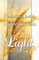 Righteousness Is the Light (Psalm 37:6, KJV) Bulletins, 100