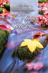 Living Water (John 7:38) Bulletins, 100