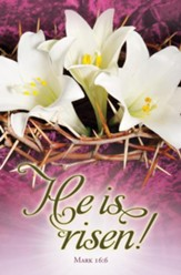 He Is Risen! (Mark 16:6) Bulletins, 100