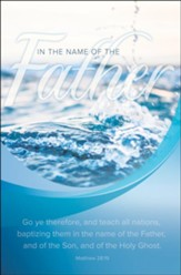 Baptizing Them in the Name of the Father (Matthew 28:19, KJV) Bulletins, 100