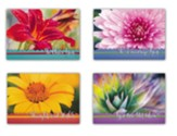 Hope Blooms (KJV) Box of 12 Encouragement Cards