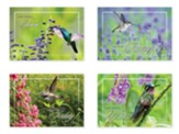 Hopeful Hummingbirds (KJV) Box of 12 Get Well Cards
