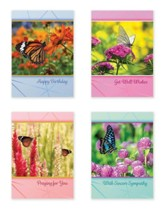 Butterfly Gardens (KJV) Box of 12 All Occasion Cards