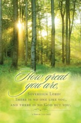 How Great You Are (2 Samuel 7:22, NIV) Bulletins, 100