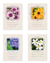 Portraits of Peace (NIV) Box of 12 Sympanthy Cards