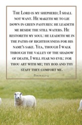The Lord Is My Shepherd (Psalm 23:1-4, KJV) Bulletins, 100