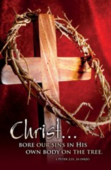 Christ... Bore Our Sins (1 Peter 2:21, 24, NKJV) Bulletins, 100