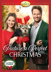Picture a Perfect Christmas, DVD
