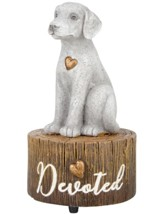 Dog, Devoted, Musical Figurine, My Favorite Things