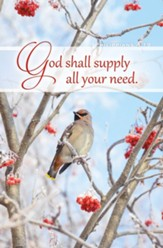 The Lord Will Supply (Philippians 4:19, KJV) Bulletins, 100