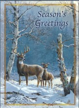 Whitetail Deer Christmas Cards, Box of 12