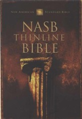 NAS Thinline Bible, Bonded leather, Burgundy