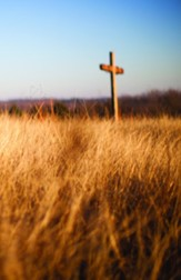Cross and Wheat Field Bulletins, 100