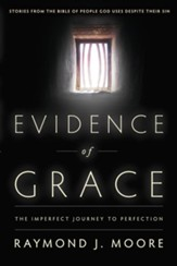 Evidence of Grace: The Imperfect Journey to Perfection - eBook