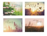 God's Light Sympathy Cards, Box of 12