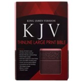 KJV Large Print Lux-Leather Brown/Pink
