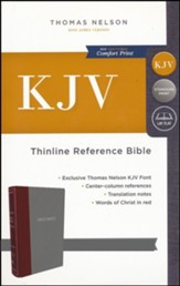KJV Thinline Reference Bible Cloth over Board Burgundy/Gray