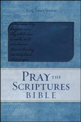 KJV Pray the Scriptures Bible, Lord's Prayer Design, Duravella, navy