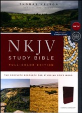 NKJV Comfort Print Full Color Study Bible, Imitation Leather, cranberry